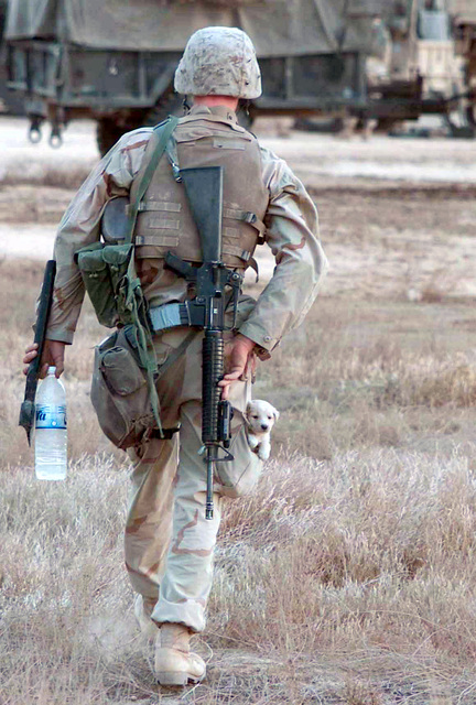 """Lance Corporal (LCPL) Mark Gagnon from Pompano, Florida, with the 7th Marine Communications Company heads to his vehicle with his new friend """"Nipr"""" in his pocket, in Ar Rustamiyah, Iraq during Operation IRAQI FREEDOM"""