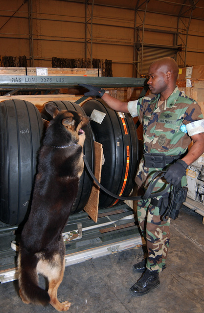 US Navy (USN) MASTER At Arms Second Class (MA2) John Richardson, and military working dog (MWD) Loeki, participate in detection training. Loeki is one of several MWDs assigned to an operating base located in the Mediterranean region in support of Operation IRAQI FREEDOM