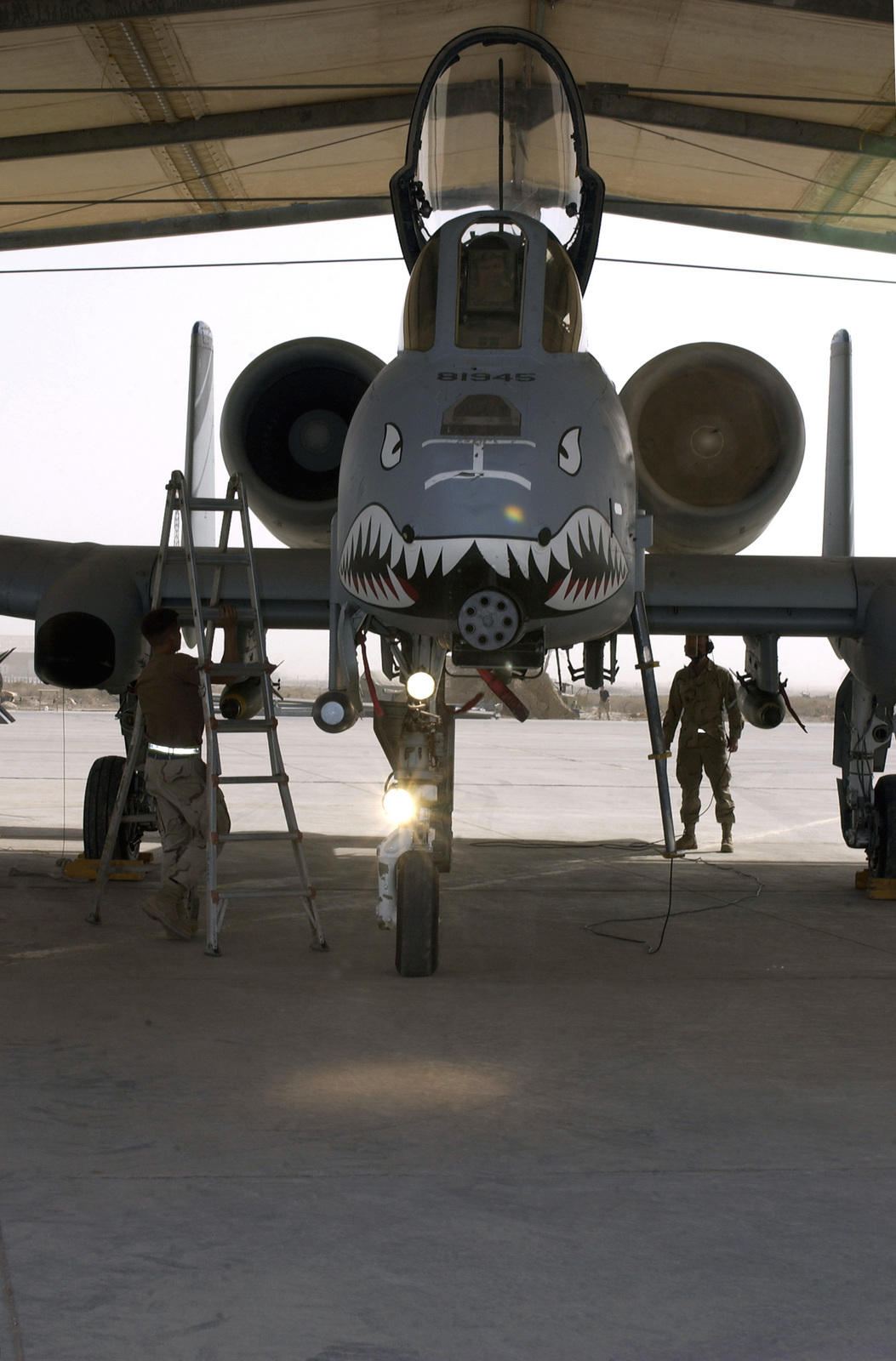 US Air Force (USAF) SENIOR AIRMAN (SRA) Rusty McRaney and AIRMAN First Class (A1C) Ryan Randolph, Crew Chiefs with the 407th Expeditionary Fighter Squadron (EFS), conduct a post flight check on an A-10 Thunderbolt aircraft, at Tallil Air Base, Iraq, after its return from a combat mission in support of Operation IRAQI FREEDOM