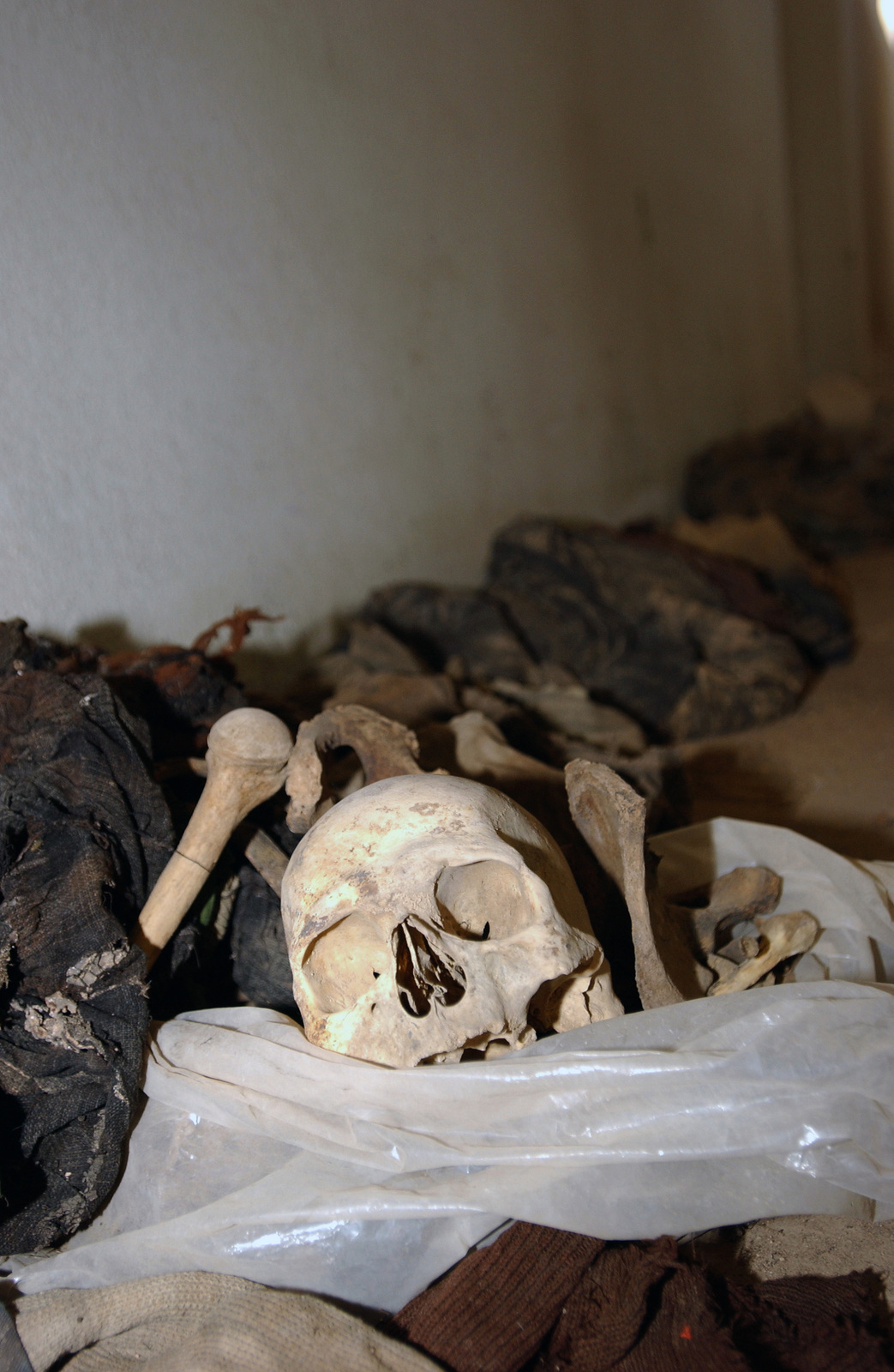 The unidentified human skeletal remains of eighty-two victims sit in a morgue in Azadi hospital in Kirkuk, Iraq, The remains were brought in from a mass grave just outside the hospital's property, and are being held there for further investigation, by US Army (USA) Special Agents assigned to the 307th Criminal Investigations Division, during Operation IRAQI FREEDOM