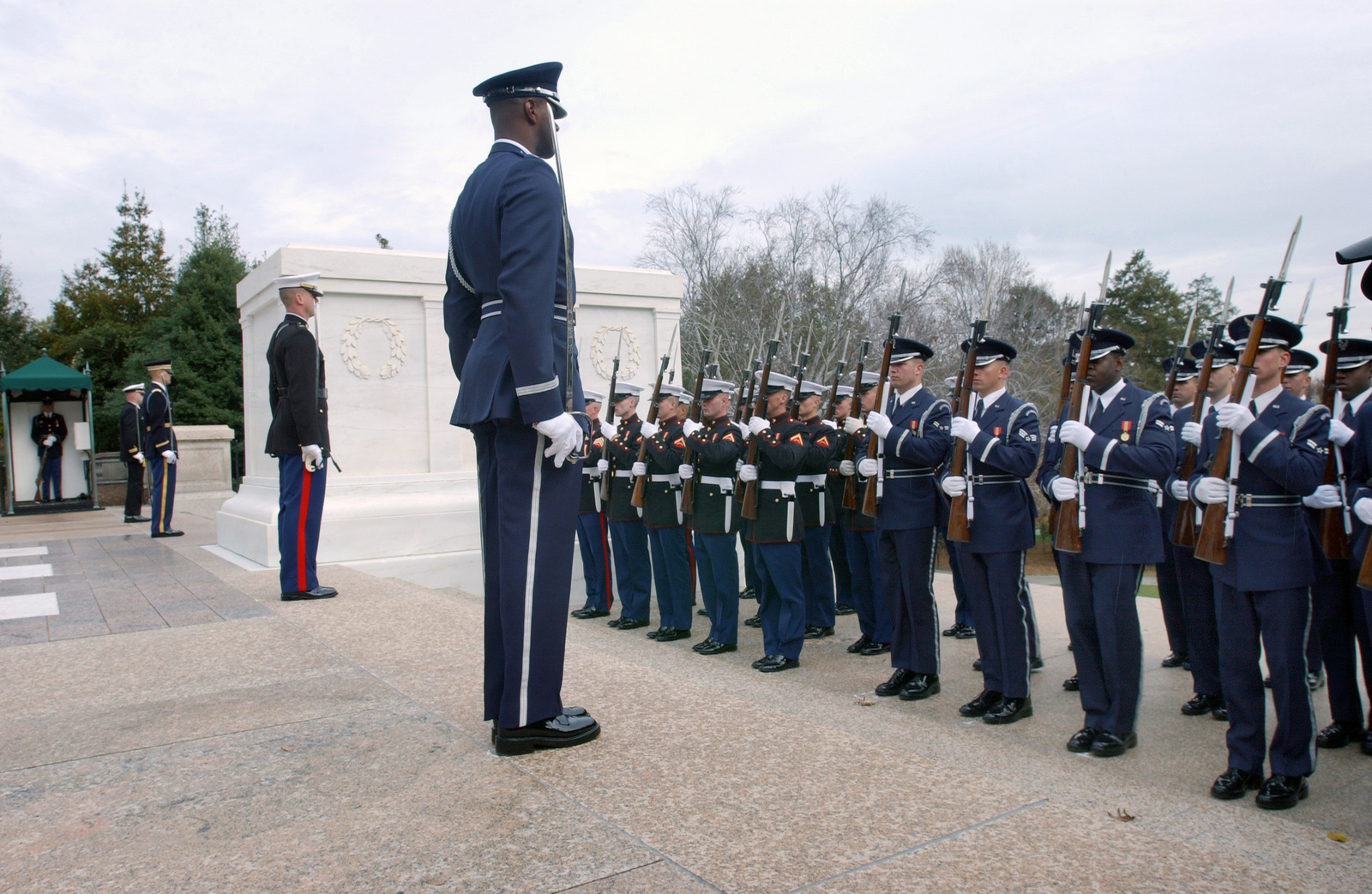 US Air Force (USAF) Captain (CPT) Jamale Hart, US Air Force Honor Guard, orders a flight of Honor Guardsmen to attention while at the Tomb of the Unknown Soldier during the 2003 Veteran's Day wreath laying ceremony