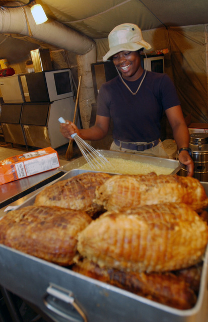 US Air Force (USAF) AIRMAN (AMN) Kenyata Jenkins, Food Service SPECIALIST, 447th Expeditionary Services Squadron (ESVS), blends ingredients for stuffing to accompany the turkeys served at the Baghdad Bistro dining facility on Thanksgiving Day during Operation IRAQI FREEDOM