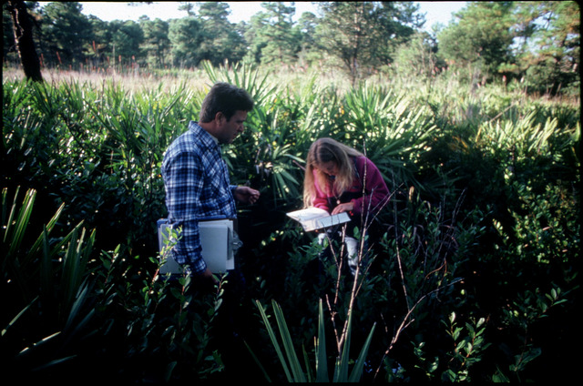 Library of Environmental Images, Office of Research and Development (ORD), September 1996 - Pesticides and Toxics - Workers collecting samples in field
