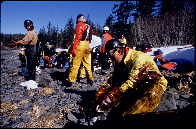 Library of Environmental Images, Office of Research and Development (ORD), September 1996 - Hazardous Waste - Workers cleaning oil-covered rocks (AK)