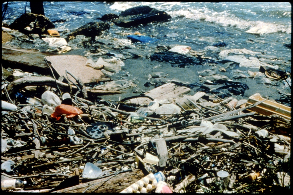 Library of Environmental Images, Office of Research and Development (ORD), September 1996 - Pollution Prevention - Debris on beach