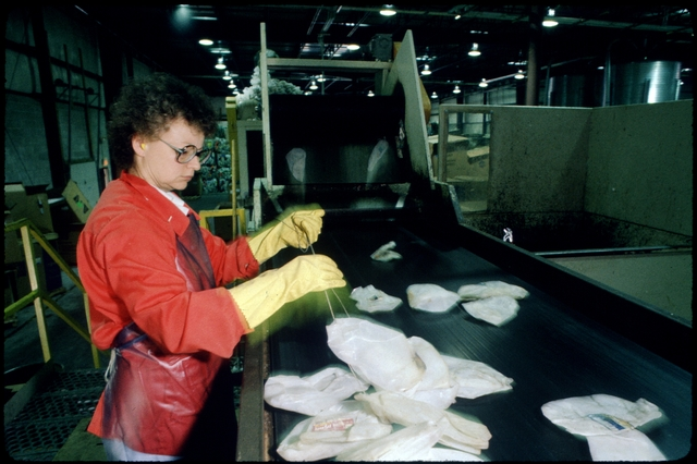 Library of Environmental Images, Office of Research and Development (ORD), September 1996 - Municipal Solid Waste - Worker in recycling facility