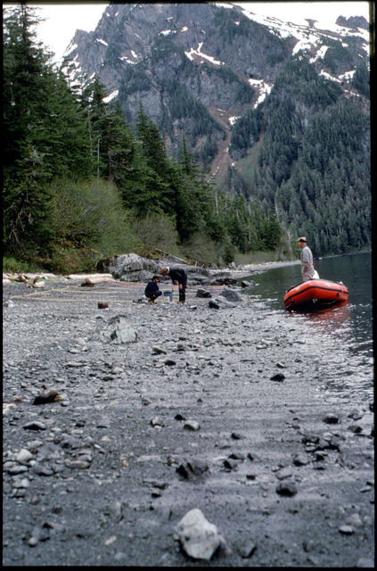 Library of Environmental Images, Office of Research and Development (ORD), September 1996 - Hazardous Waste - Bioremediation site on a porous beach (AK)