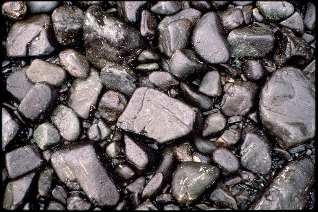 Library of Environmental Images, Office of Research and Development (ORD), September 1996 - Hazardous Waste - Oil covered rocks on beach (AK)