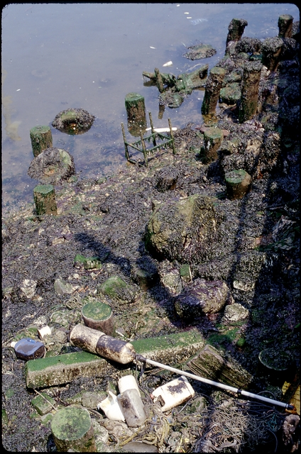 Library of Environmental Images, Office of Research and Development (ORD), September 1996 - Water - Trash on shoreline