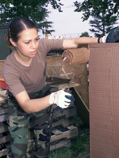 U.S. Air Force SENIOR AIRMAN Denise Iriarte-Schepp from Guam, deployed to the 3rd Air Expeditionary Group at Kwang-Ju Air Base, Republic of Korea, paints a bookshelf for the Civil Engineer Operations tent on Sept. 3, 2004. (U.S. Air Force photo by Technical Sergeant Corey A. Clements) (Released)