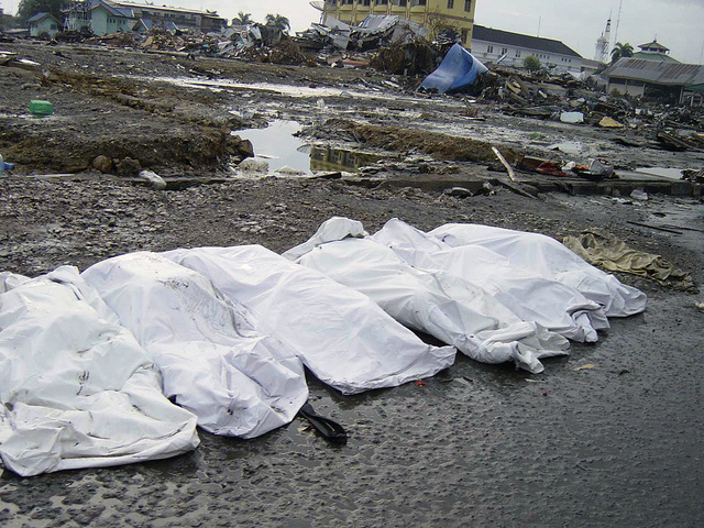 Amid trash and debris, the shrouded bodies of the deceased lay on a street in downtown Banda Aceh, Sumatra, Indonesia, following the massive Tsunami that struck the area on December 26, 2004
