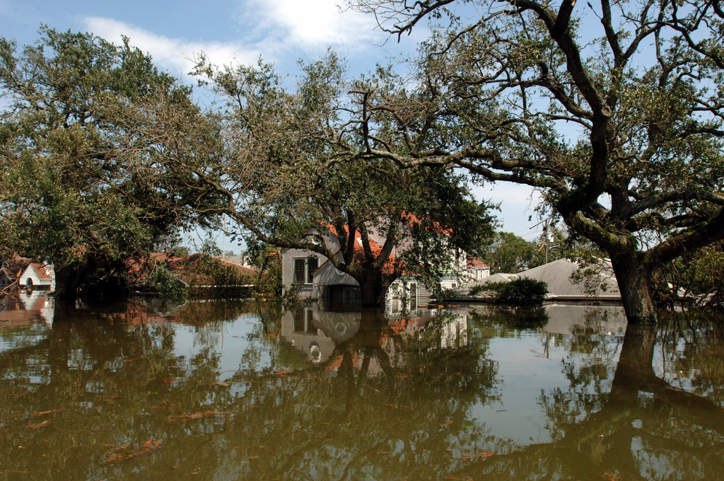 [Hurricane Katrina] New Orleans, LA, August 30, 2005 -- Many neighborhoods remain flooded due to Hurricane Katrina. New Orleans is being evacuated because of flooding following the breaks in the levees as a result of hurricane Katrina.  Jocelyn Augustino/FEMA