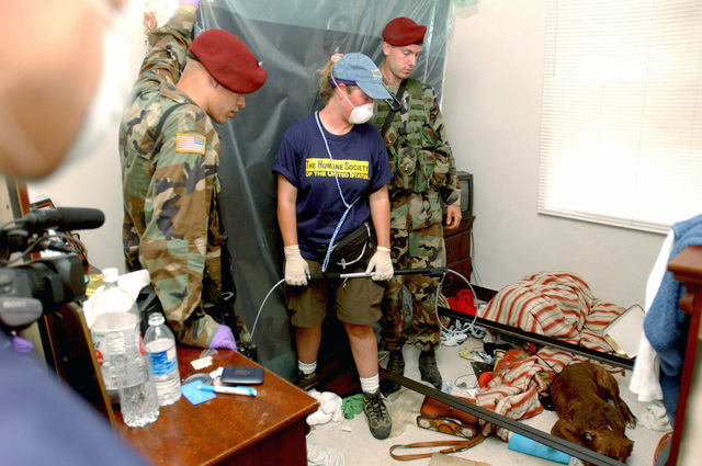 Two US Army (USA) paratroopers from the 82nd Airborne Division (AD), Fort Bragg, North Carolina (NC), respond to a request from the Humane Society about an abandoned pet left in a vacated apartment near the French Quarter of New Orleans, during the Task Force Katrina relief effort