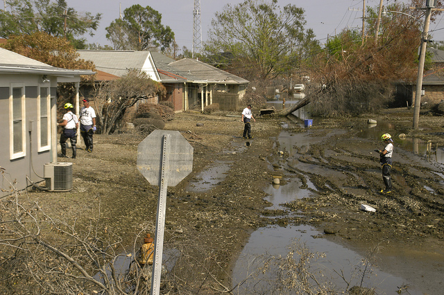 """[Hurricane Katrina] West Golf Course, New Orleans, LA 9-26-05  Urban Search & Rescue teams from """"Fairfax County Virgina Task Force 1"""" search door to door for people and animals.  MARVIN NAUMAN/FEMA photo"""