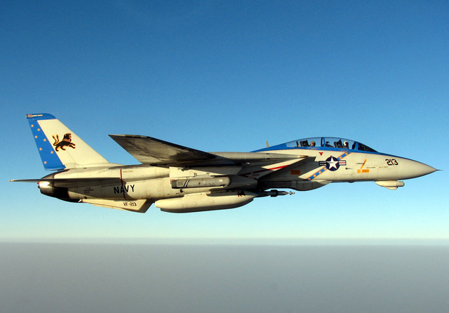 A specially painted US Navy F-14D Tomcat fighter, Fighter Squadron 213 (VF-213), Blacklions, Naval Air Station (NAS) Oceana, Virginia (VA), conducts a mission over the Persian Gulf. The Tomcat is equipped with an AAQ-14 LANTIRN (Low-Altitude Navigation and Targeting InfraRed for Night) pod and armed with a GBU-16 1,000-pound bomb. The VF-213 is assigned to Carrier Air Wing 8 (CVW-8), currently embarked aboard the Nimitz Class Aircraft Carrier USS THEODORE ROOSEVELT (CVN 71)