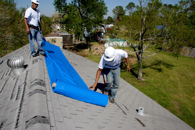 "[Hurricane Rita] Port Arthur, TX, October 29, 2005 -- SMI roofers rollout the first of the blue covering for a roof.  FEMA provides funds for the ""blue roof"" program.  Photo by Ed Edahl/FEMA"