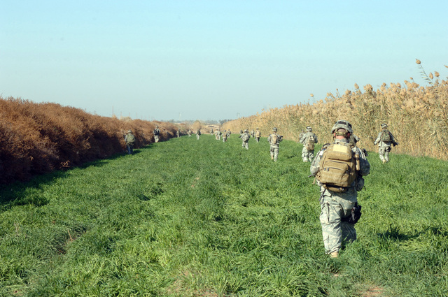On Dec. 30, 2005 soldiers from Bravo Company, 2nd Bn, 502nd INF conducted Search and Sweep Operations in the Village of Shakaria, Iraq. Soldiers walked fields in a tactical manner looking for any thing that looked out of place(U.S. Army photo by STAFF SGT. Kevin L. Moses Sr) (Released)