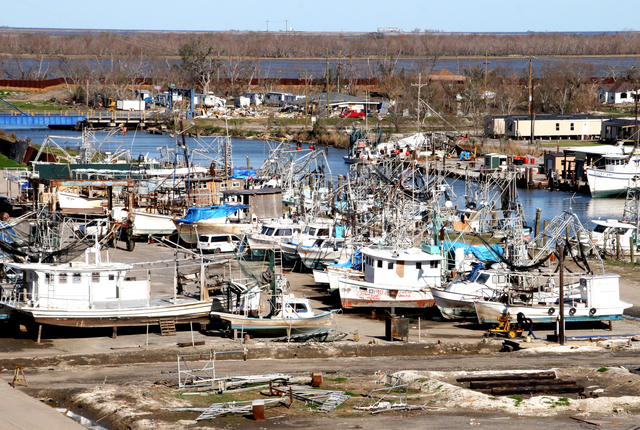 [Hurricane Katrina] Empire, LA, February 4, 2006 - Grounded fishing fleets in Plaquemines Parish are prepared for salvage or stabilized for their return to the water.  Hurricane Katrina has adversely affected the area's fishing industry which is beginning to recover with the help of FEMA, state and parish officials.  Robert Kaufmann/FEMA
