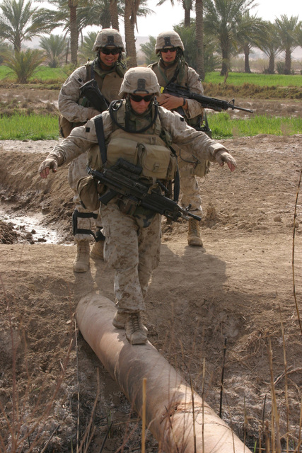 On March 1, 2006, Marines with 1ST Squad, 3rd Platoon, 2nd Battalion 6th Marines (2/6), Regimental Combat Team 5, patrol the farmlands of Fallujah, Iraq during Operation Jaws V.  I MEF FWD and MNF-W conduct counter-insurgency operations with Iraqi Security Forces to isolate and neutralize Anti-Iraqi Forces, to support the continued development of Iraqi Security Forces, and to support Iraqi reconstruction and Democratic elections in order to create a secure government that enables Iraqi self-reliance and self-governance. (U.S. Marine Corps photo by CPL. Adaecus G. Brooks) (Released)
