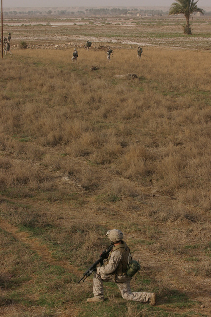 On March 2, 2006, Marines with 3rd Platoon, 2nd Battalion, 6th Marines (2/6), Regimental Combat Team 5, patrol through an open field in Fallujah, Iraq during Operation Jaws V. I MEF FWD and MNF-W conduct counter-insurgency operations with Iraqi Security Forces to isolate and neutralize Anti-Iraqi Forces, to support the continued development of Iraqi Security Forces, and to support Iraqi reconstruction and Democratic elections in order to create a secure government that enables Iraqi self-reliance and self-governance. (U.S. Marine Corps photo by CPL. Adaecus G. Brooks) (Released)