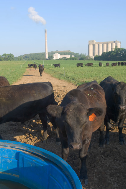 412_DSP_Agriculture_035