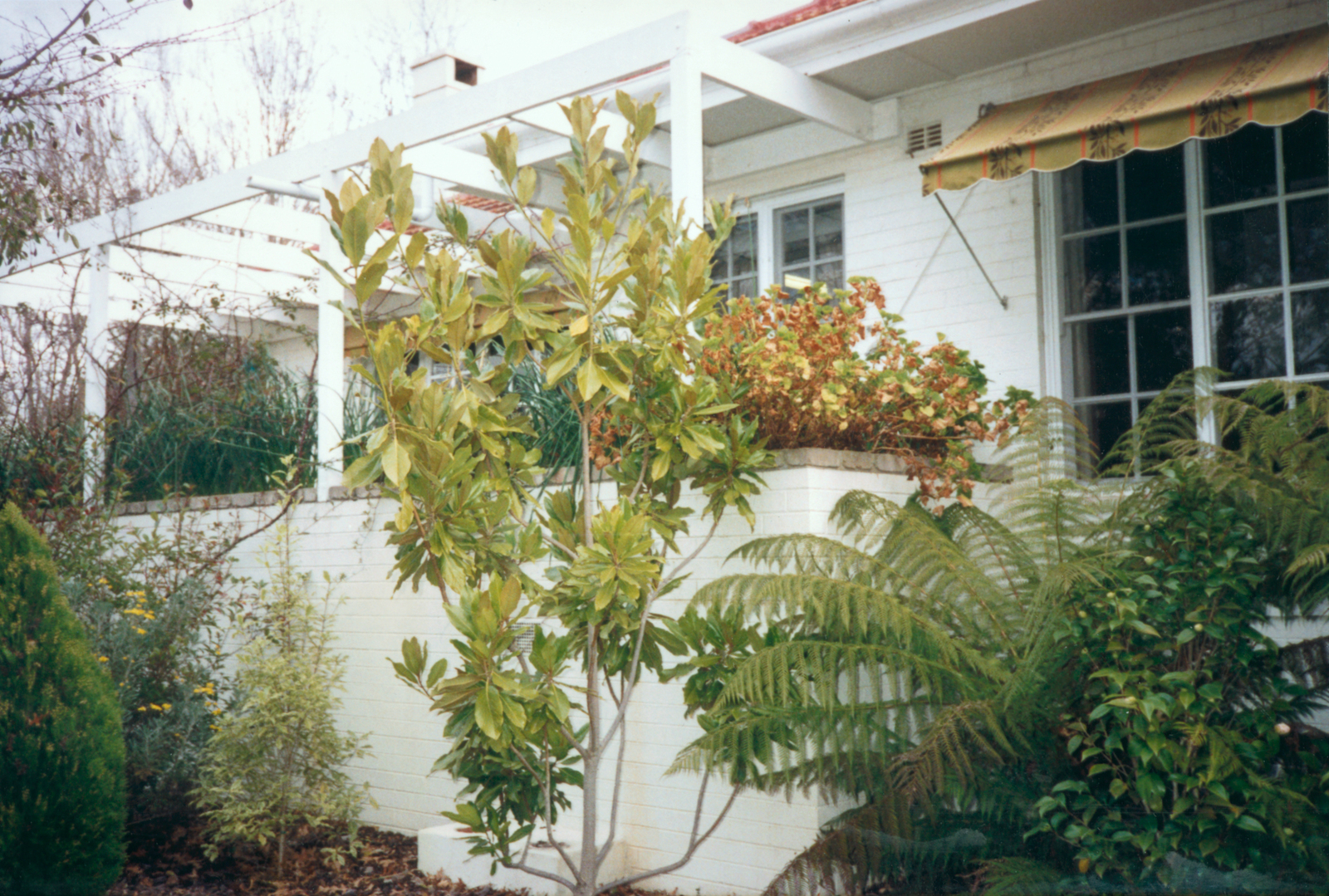 Canberra - Marine Security Guard Residence - 1989