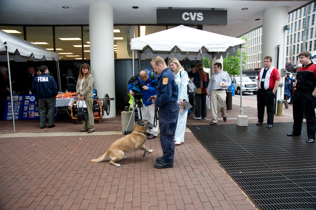 Washington, DC, May 22, 2008 -- Fairfax County rescue dog and trainer from Virginia Task Force 1 at FEMA's Hurricane Awareness Day at FEMA Headquarters.  FEMA hosted the event to help citizens become aware of the coming Hurricane Season.  FEMA/Bill Koplitz
