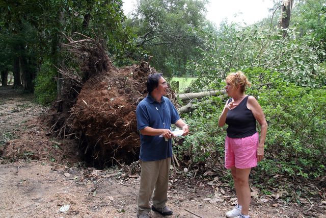 [Hurricane Gustav] Woodville, MS, September 6, 2008 -- FEMA PDA Specialist Henry Leong is shown one of the trees toppled by Hurricane Gustav by Jenny Angeline, estate manager at the historic Rosemont Plantation. Rosemont was the boyhood home of Jefferson Davis.  Photo by Greg Henshall / FEMA