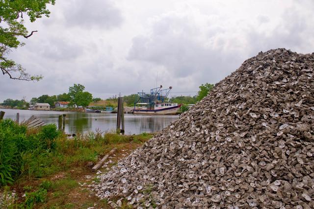 Office of the Administrator (Lisa P. Jackson) - BP Oil Spill (Web Photographs) - USEPA photo by Eric Vance [412-APD-659-2010-05-13_Cocodrie_047.jpg]