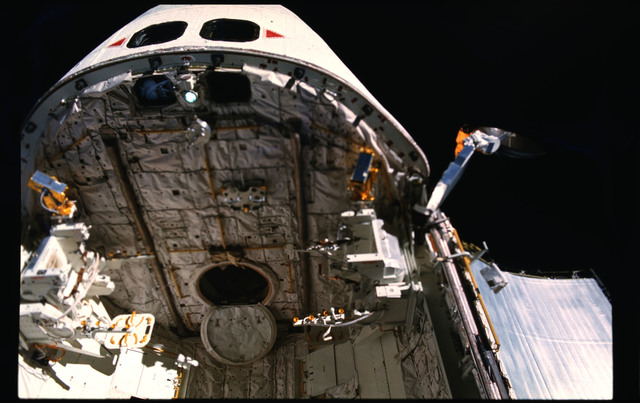 51A-104-056 - STS-51A - 51A Payload bay