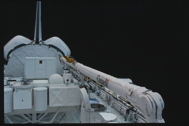 S07-09-428 - STS-007 - PLB - GAS canisters,SPAS-01,OSTA-2,stowed RMS,OMS pods,vertical tail