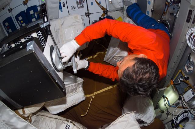 S114E7003 - STS-114 - Camarada on middeck