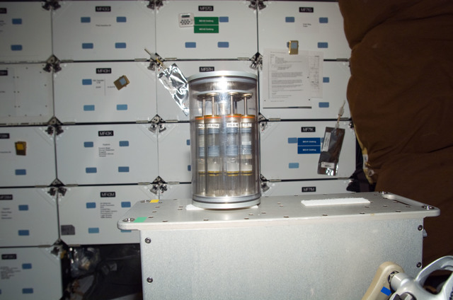 S115E07242 - STS-115 - Yeast GAP in the FWD MDDK of the Space Shuttle Atlantis during Expedition 13 / STS-115 Joint Operations