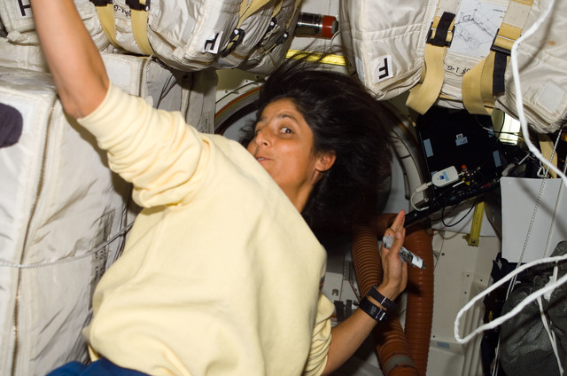 S116E05876 - STS-116 - Expedition 14 FE Williams in the Airlock hatch area on STS-116 Space Shuttle Discovery