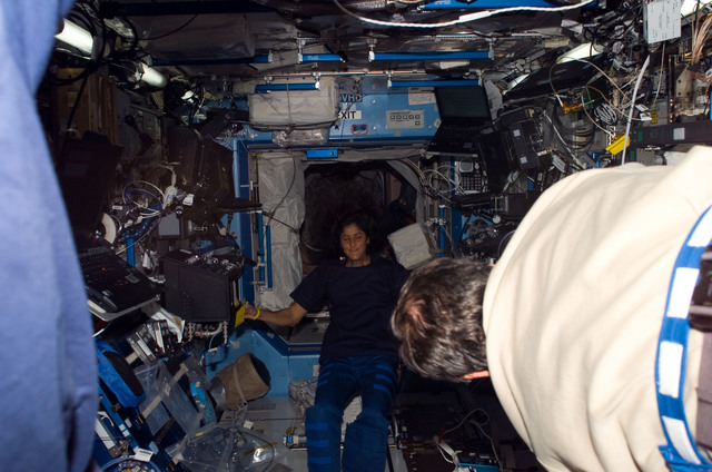 S116E07430 - STS-116 - Expedition 14 FE Williams in the U.S. Laboratory during Expedition 14