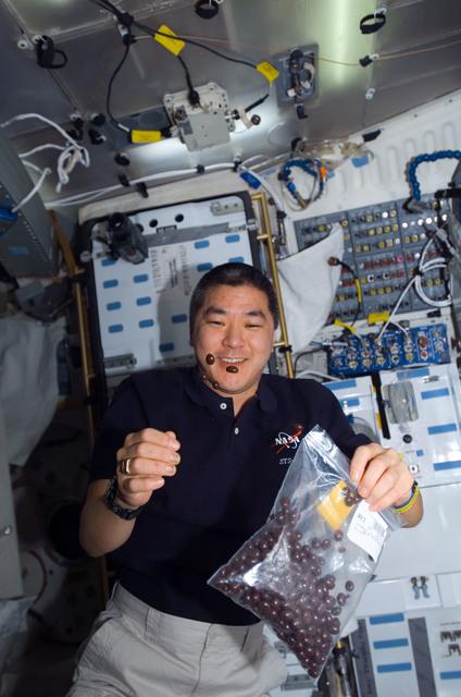 S122E011215 - STS-122 - Tani on MDDK
