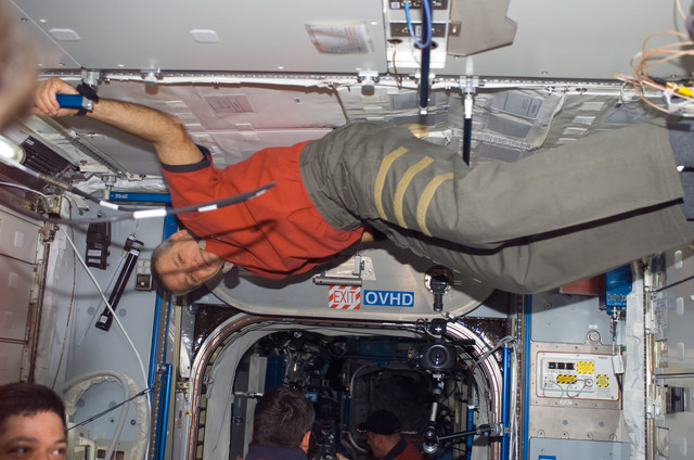 S123E006576 - STS-123 - Linnehan and Behnken in the Node 2 during Joint Operations
