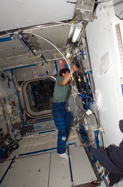 S123E007036 - STS-123 - Doi in the Node 2 during Expedition 16 / STS-123 Joint Operations