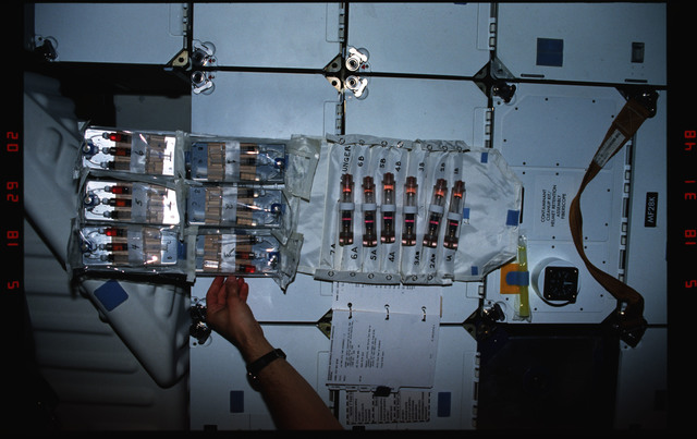 S37-01-004 - STS-037 - BIMDA experiment equipment