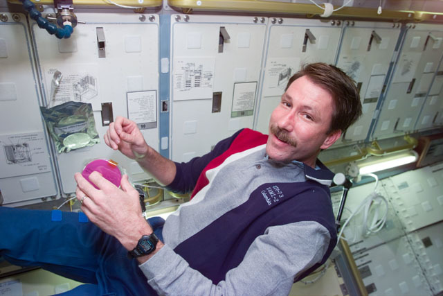 S73E5330 - STS-073 - DSO 611,Pilot Kent Rominger attaches petri dish to microbial air sampler