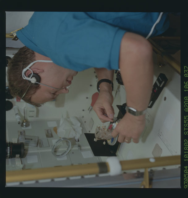 STS055-106-037 - STS-055 - STS-55 Payload Specialist Schlegel collects fungi sample at SL-D2 Rack 1