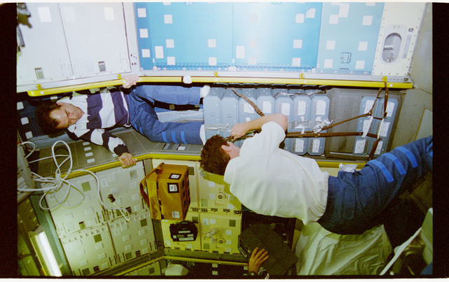 STS071-112-026 - STS-071 - Strekalov and Harbaugh stow equipment in the Spacelab