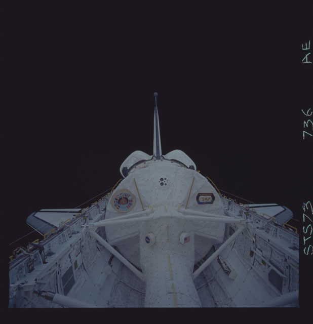 STS073-736-000AE - STS-073 - Payload bay with Spacelab against the blackness of space