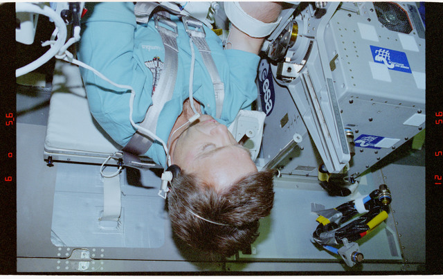 STS078-304-023 - STS-078 - TVD, Thirsk collects data during LMS-1 Spacelab mission