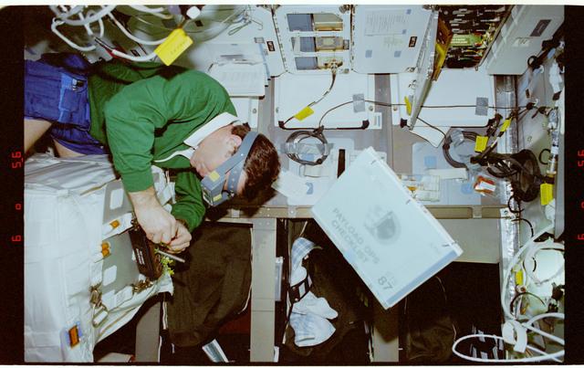 STS087-333-030 - STS-087 - CUE - B-STIC, Kadenyuk works with the Brassica rapa plants