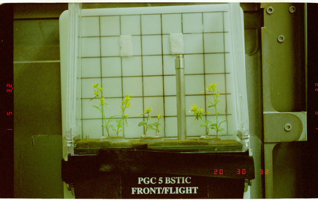 STS087-351-009 - STS-087 - CUE - BSTIC, documentation of plants in PGC