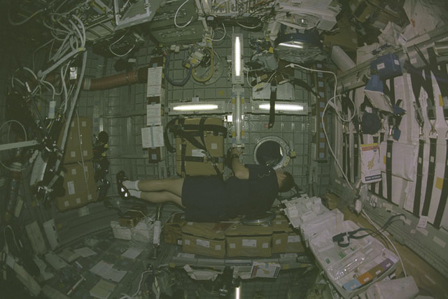 STS107-399-036 - STS-107 - Brown peers through an overhead window in the SH RDM during STS-107