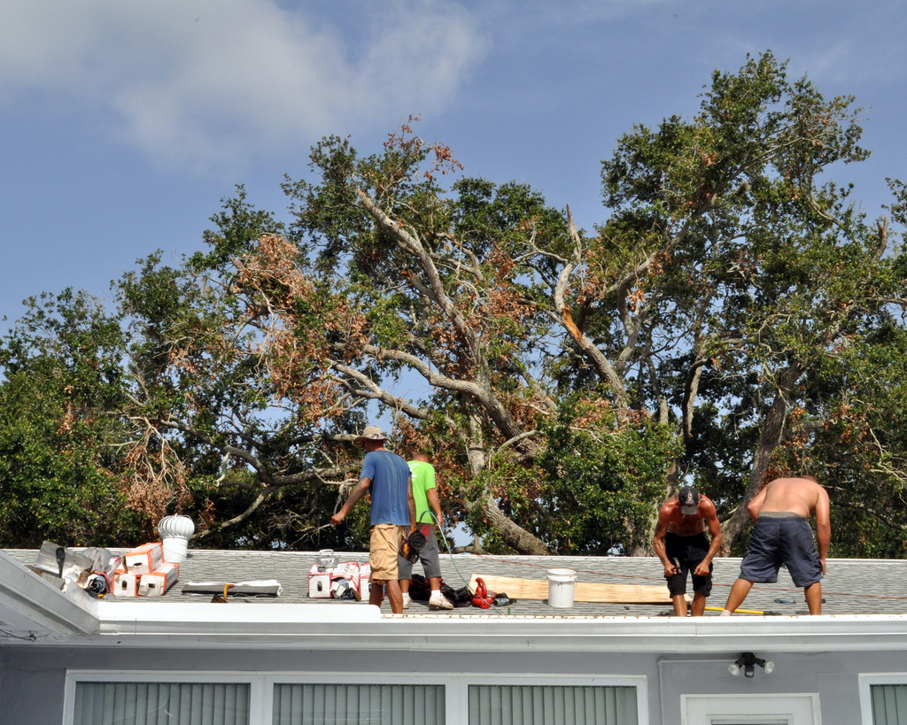 Hurricane/Tropical Storm ^ Tornado - Largo, Fla. , July 20, 2012 -- Tornado damage to an old growth tree, damaged this roof and many other roofs in Largo, FL.  FEMA is present in Pinellas County, going door-to-door helping residents apply for FEMA assistance.  Photo by Marilee Caliendo/FEMA