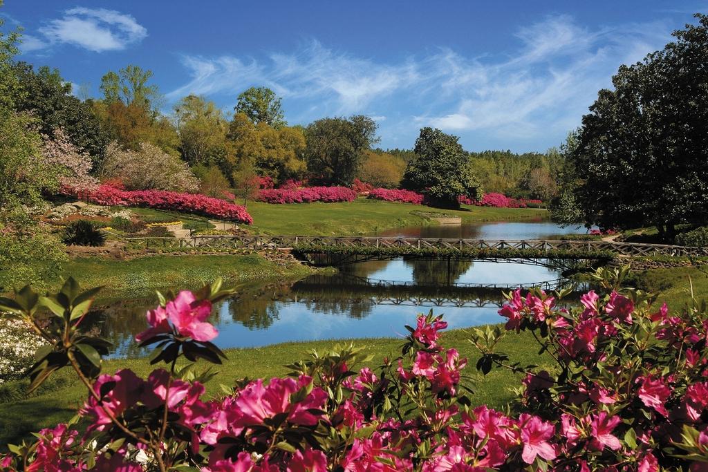 Alabama's Coastal Connection - Bellingrath Gardens Mirror Lake