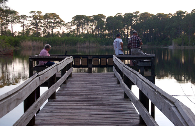 Alabama's Coastal Connection - Watching Wildlife at Audubon Bird Sanctuary on Dauphin Island